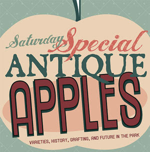 antique apples sign graphic