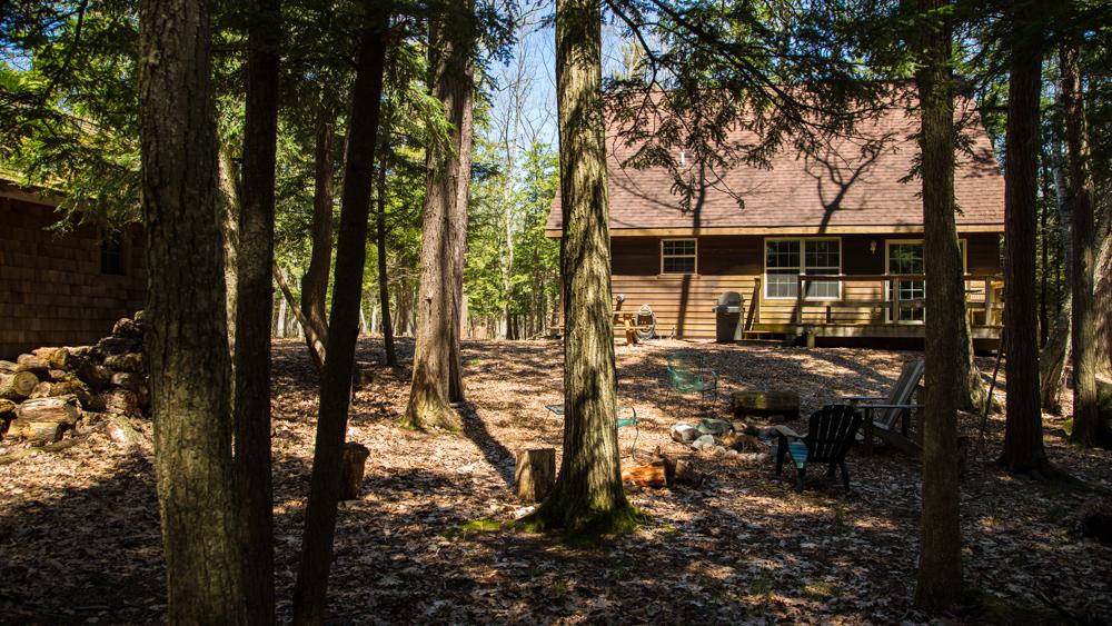 Arbor Woods backyard