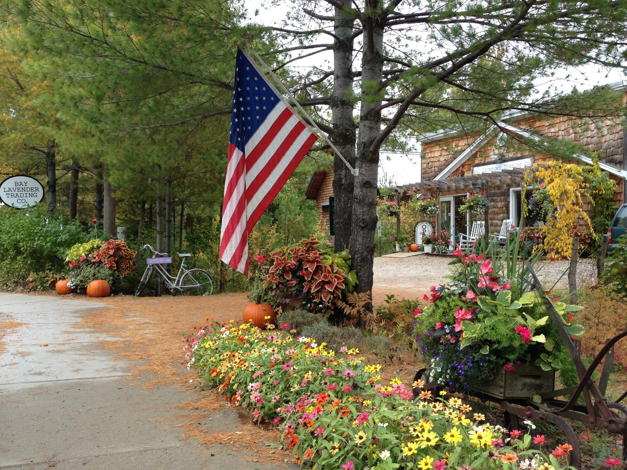 fall gardens outside Bay Lavender storefront
