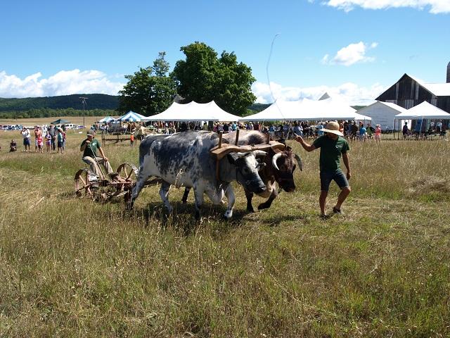 Dechow Farm at Port Oneida Fair