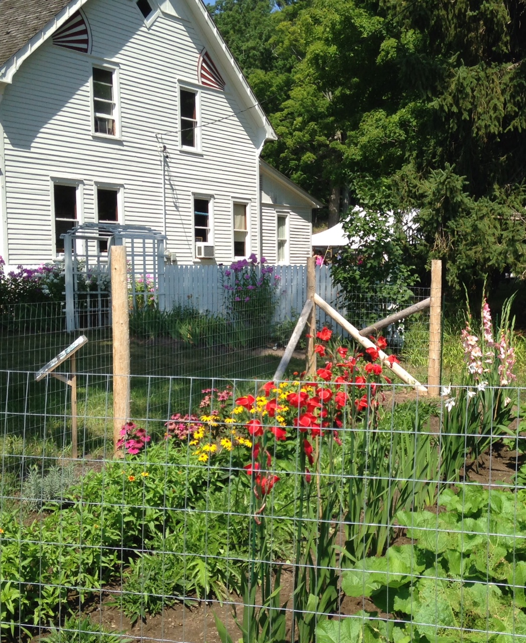 flower garden at Olsen Farm