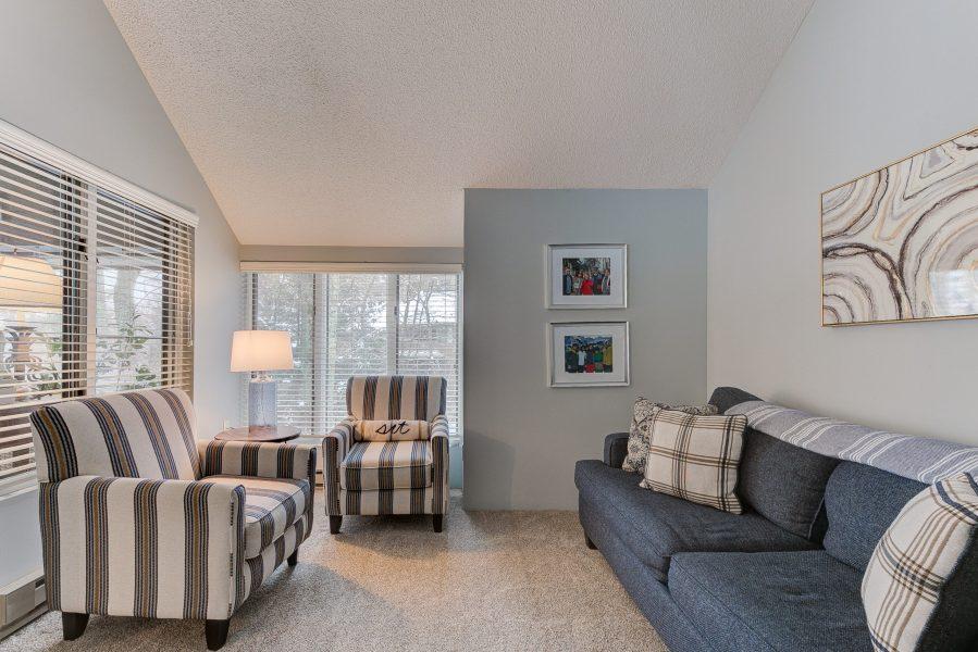 vacation rental modern living room