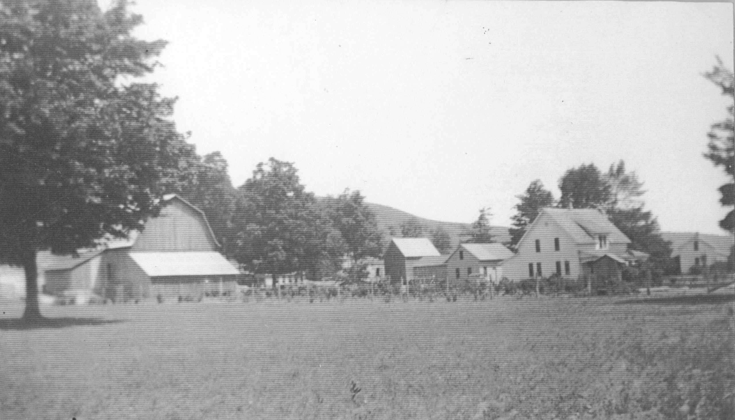 Olsen farmyard historic B&W photo
