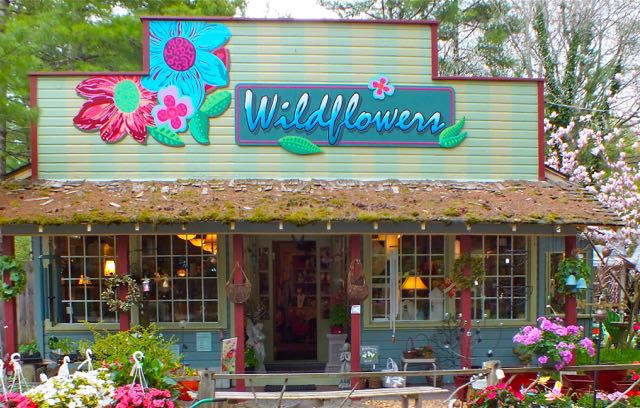 photo of Wildflowers storefront