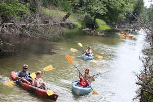 kayakers paddling the crystal river