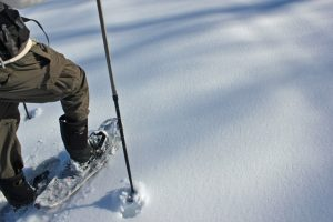 closeup of the feet and ski pole of a person on snowshoes tracking through the fresh snow