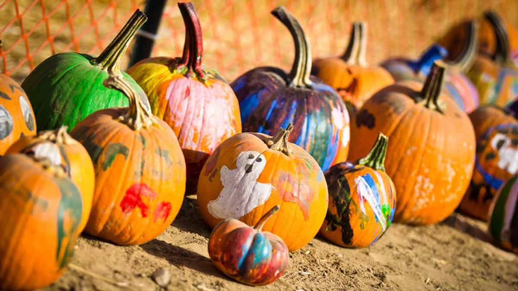 painted pumpkins family kid friendly event in glen arbor